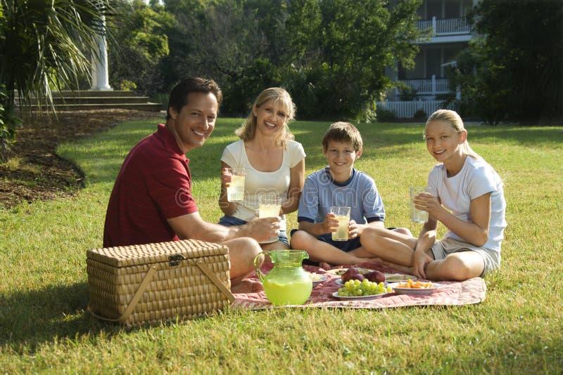 Familie die picknick in park heeft. stock afbeelding