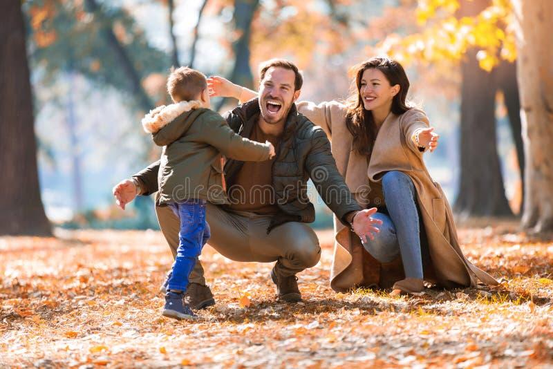 Familie die pret in het de herfstpark hebben met zijn zoon royalty-vrije stock foto's
