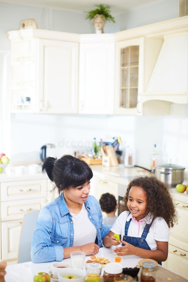 Familie die pret in keuken hebben stock fotografie
