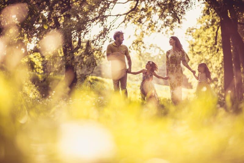 Familie die samen van in het park genieten royalty-vrije stock foto's