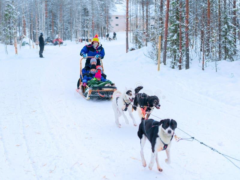 Familie die schor slee in Lapland in de winter Fins bos berijden stock afbeelding