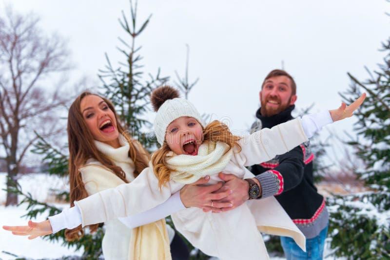 Familie, die Spaß-Fliegen-Tochter hat stockfotografie