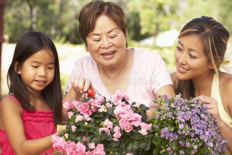 Familie die thuis tuiniert stock afbeelding