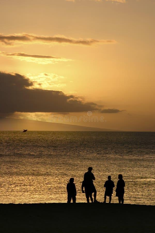 Familie, die Wal durchbrechend überwacht lizenzfreie stockfotos