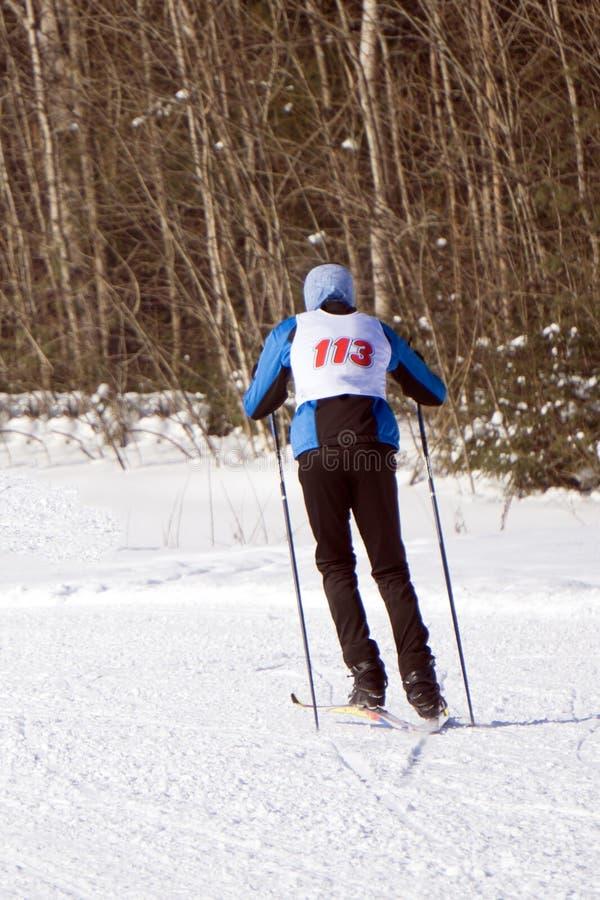 Familie, die zusammen auf schneebedecktem Berg Ski fährt und etwas im Abstand schaut lizenzfreies stockfoto