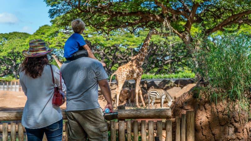 Familie an einem Zoo stockbilder