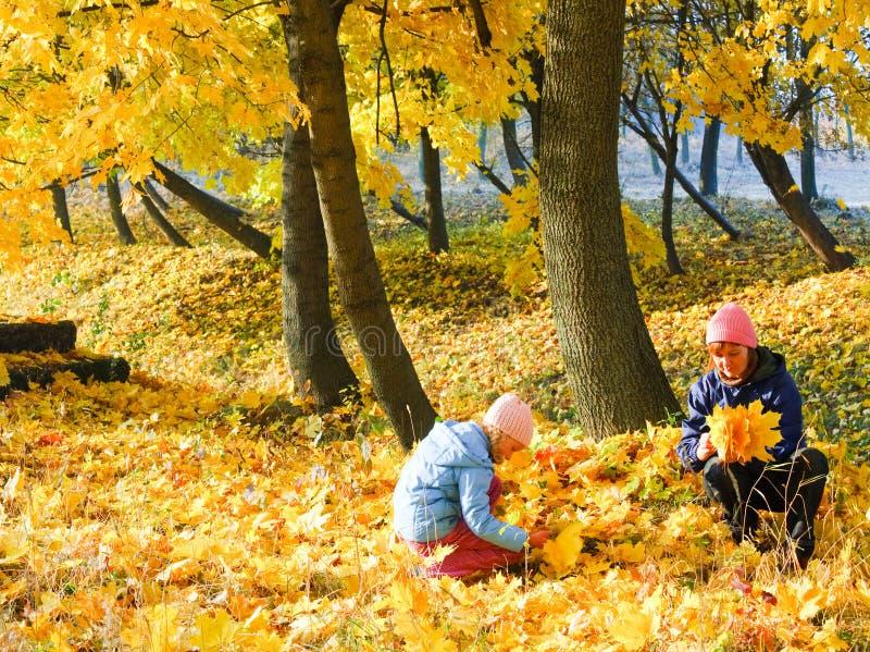 Familie im Herbstahornholzpark stockfoto