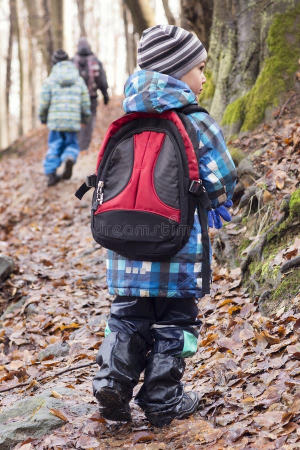 Familie met kinderen die in bos wandelen royalty-vrije stock afbeeldingen