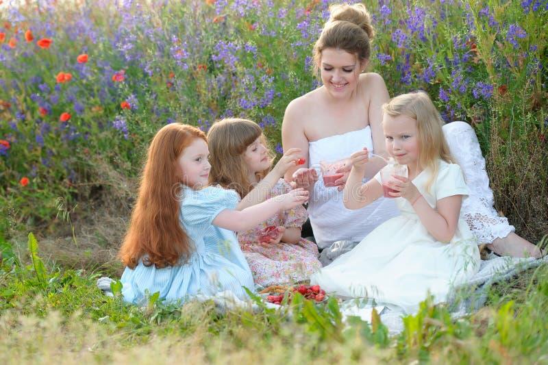 Familie met kinderen die van picknick in openlucht genieten stock afbeeldingen