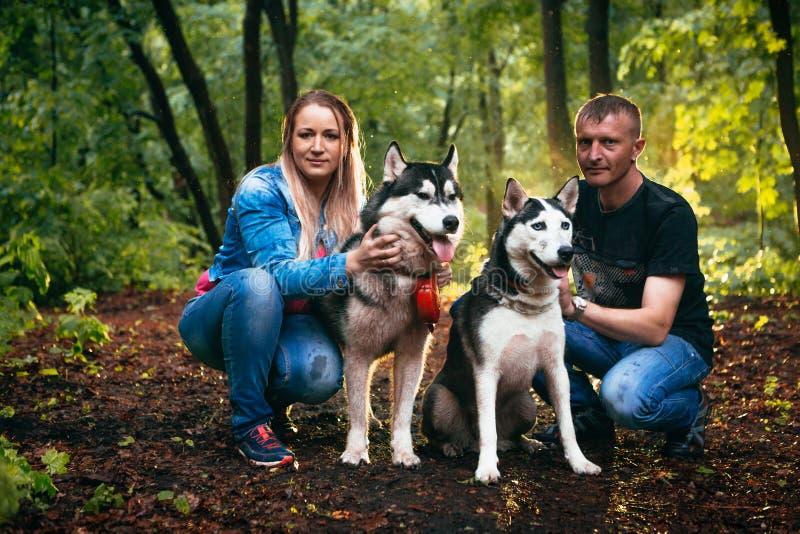 Familie met schor honden in het bos stock foto's