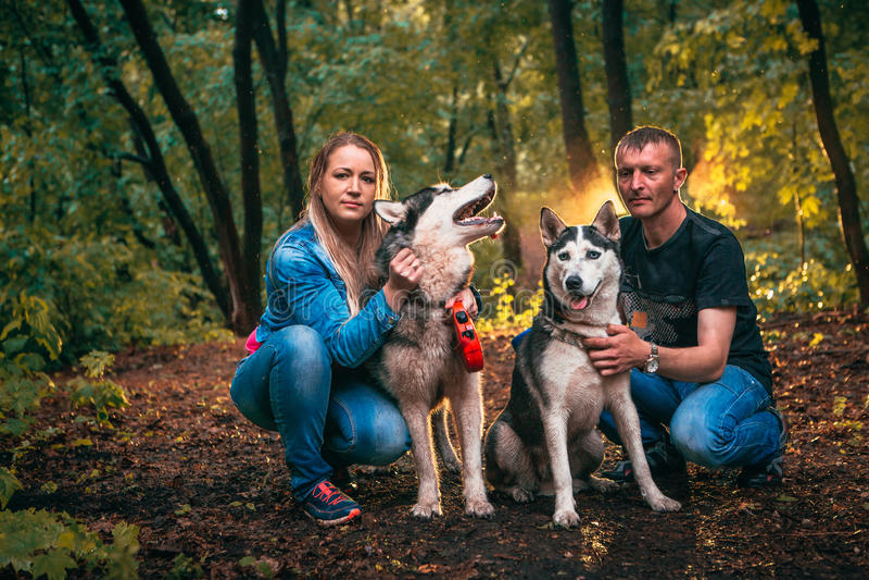 Familie met schor honden in het bos stock afbeeldingen
