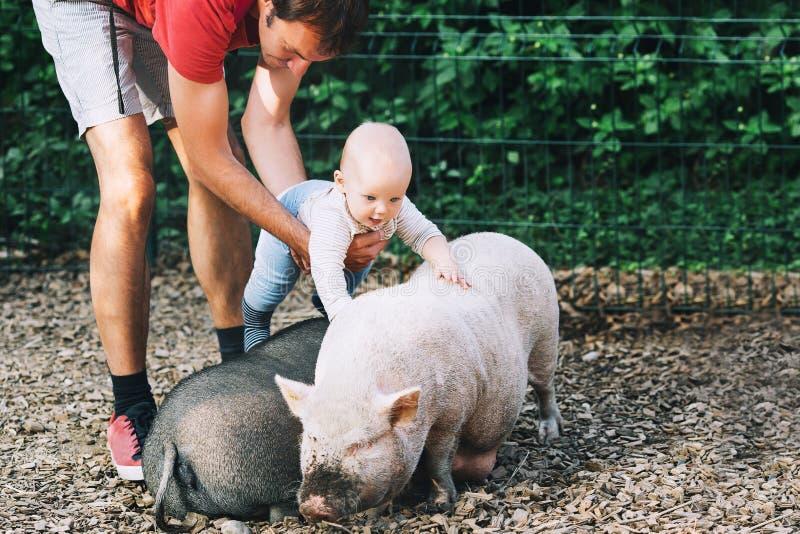 Familie mit Kindern im Streichelzoo lizenzfreie stockbilder