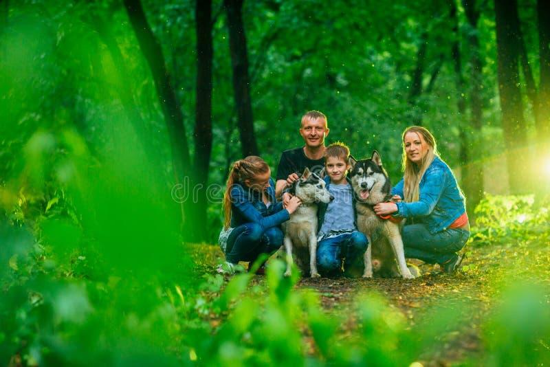 Familie mit Kindern und heisere Hunde im Wald lizenzfreies stockbild