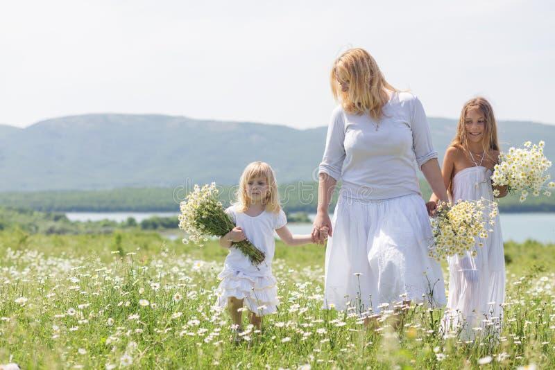 Familie op bloemgebied stock afbeeldingen