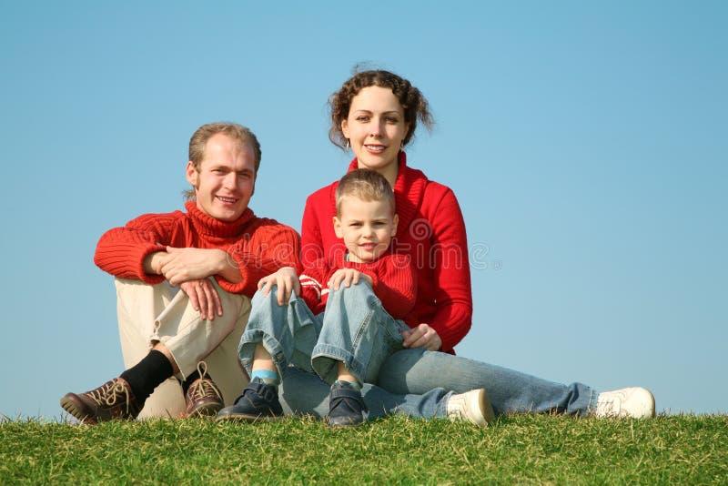 Familie op de weide royalty-vrije stock foto's