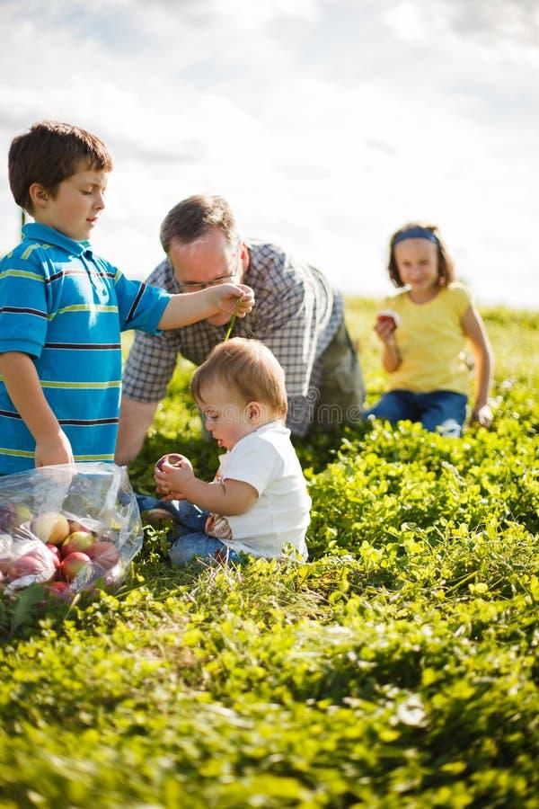 Familie op het gras royalty-vrije stock afbeeldingen