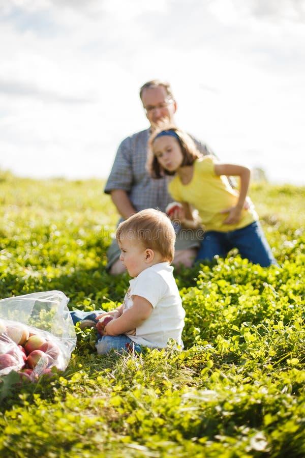 Familie op het gras stock afbeelding