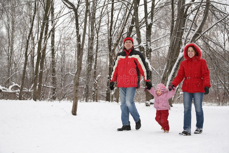 Familie in park bij de winter royalty-vrije stock foto's