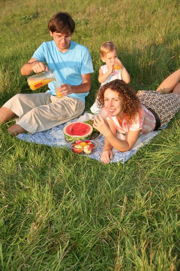 Familie `s Picknick stockbild