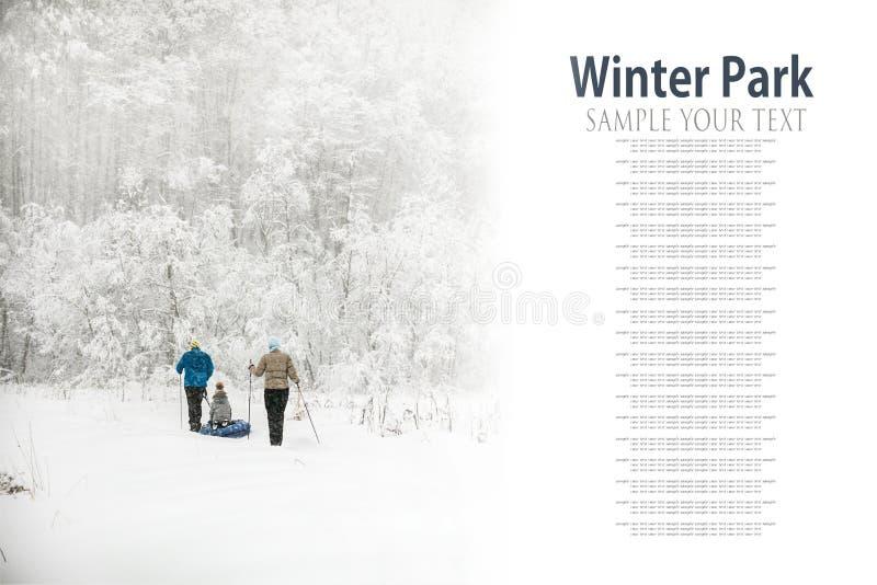Familie ski?en die door het de winterbos gaan stock afbeeldingen