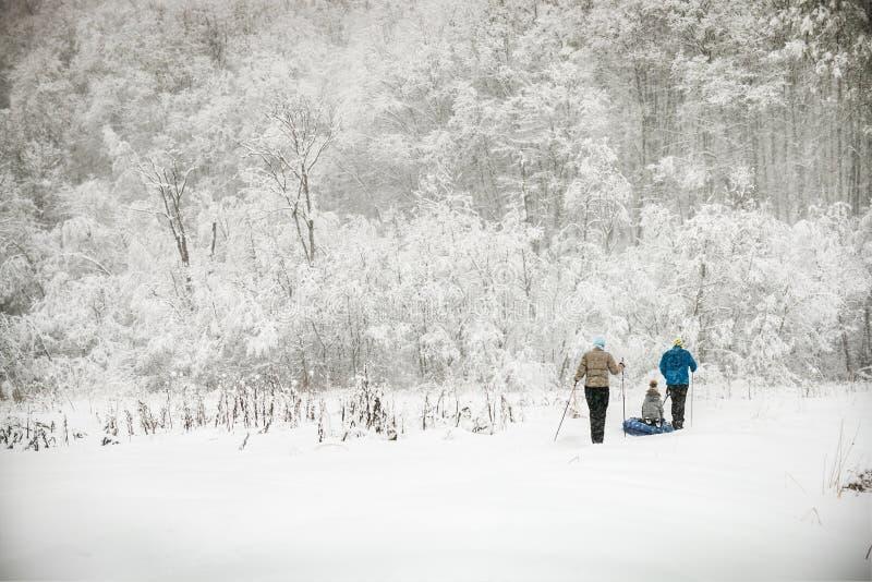 Familie ski?en die door het de winterbos gaan royalty-vrije stock afbeeldingen