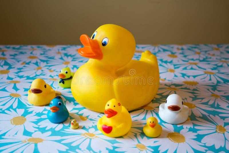 Familie speelgoedeenden op de bodem stock afbeeldingen