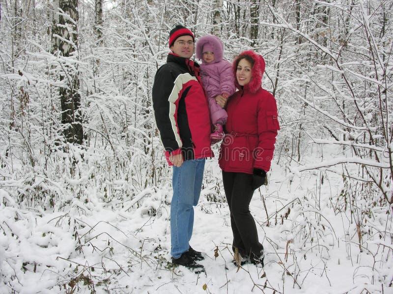 Familie und erster Schnee stockbild