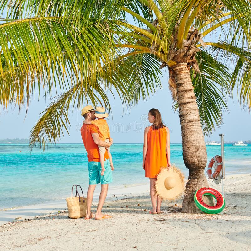 Familie van drie op strand onder palm royalty-vrije stock fotografie