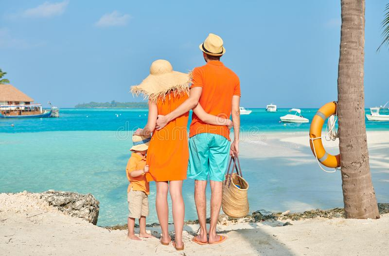 Familie van drie op strand onder palm royalty-vrije stock afbeelding