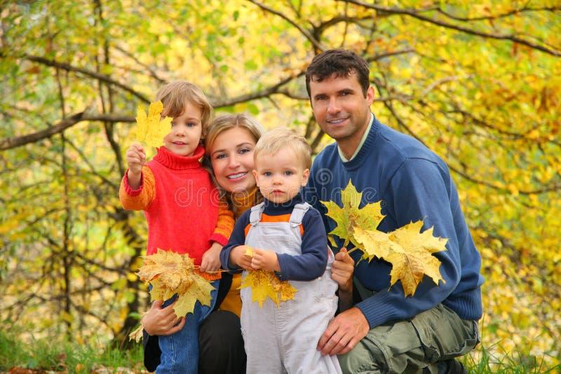 Familie van vier in de herfstpark stock afbeeldingen