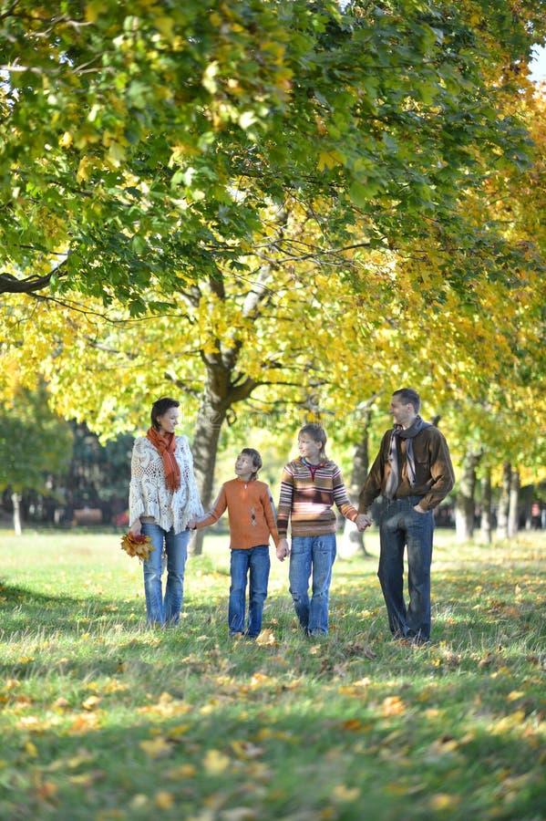 Familie van vier die in de herfstpark lopen stock afbeeldingen