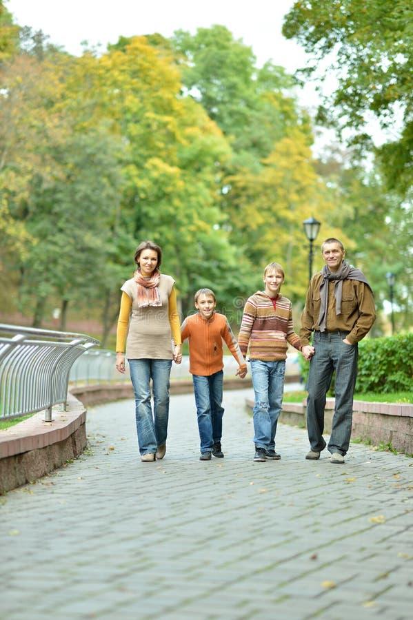 Familie van vier die in de herfstpark ontspannen stock afbeeldingen