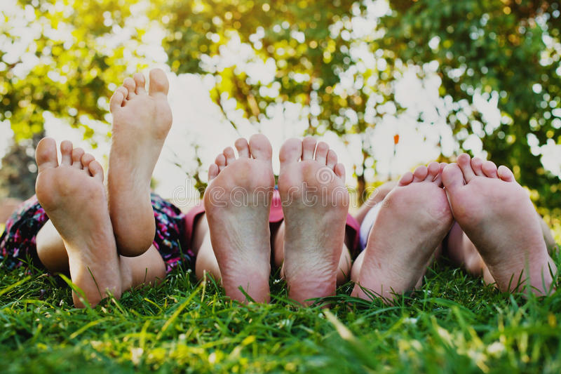 Familie van vier in het de herfstbos stock afbeelding