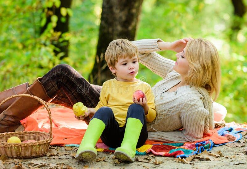 Familie van vier in het de herfstbos Moeder mooie vrouw en weinig zoon die bospicknick ontspannen Goede dag voor de lentepicknick stock foto