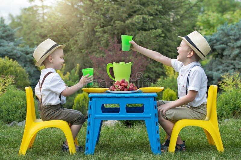 Familie van vier in het de herfstbos Twee broers eten aardbeien en drinken sap in aard royalty-vrije stock afbeeldingen