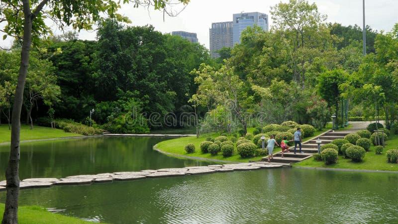 Familiedag in het groene park stock fotografie