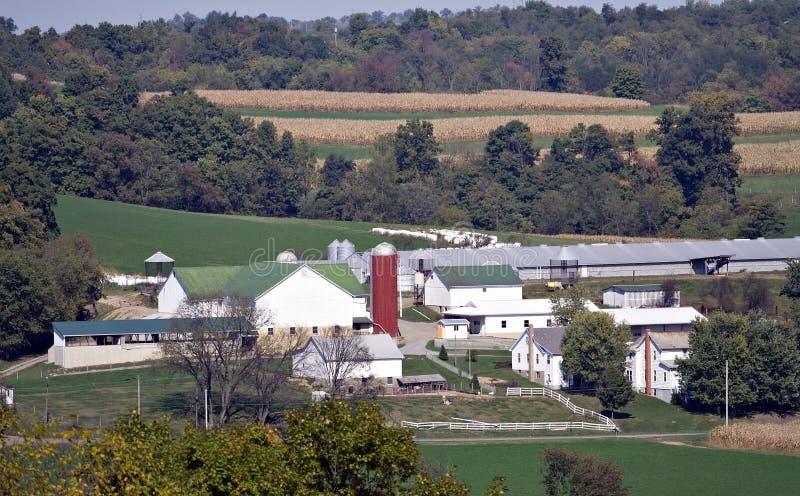 Familien-Bauernhof stockbild