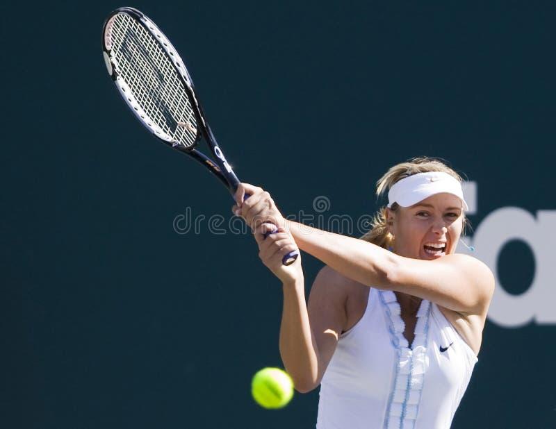 Familien-Kreis-Cup Maria-Sharapova lizenzfreie stockbilder