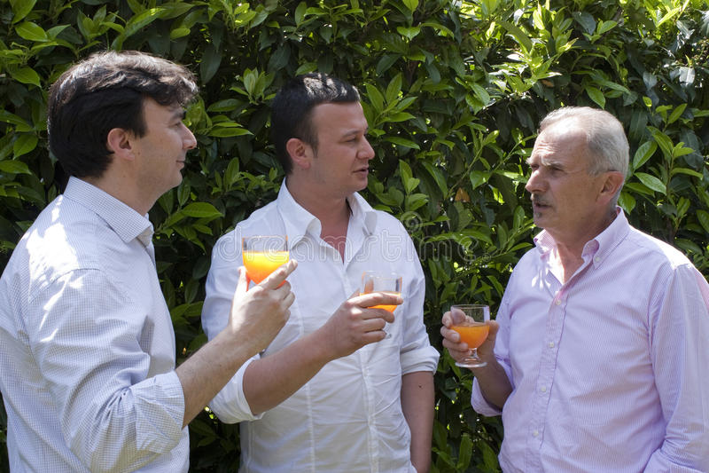 Familien-Party im Garten lizenzfreies stockfoto