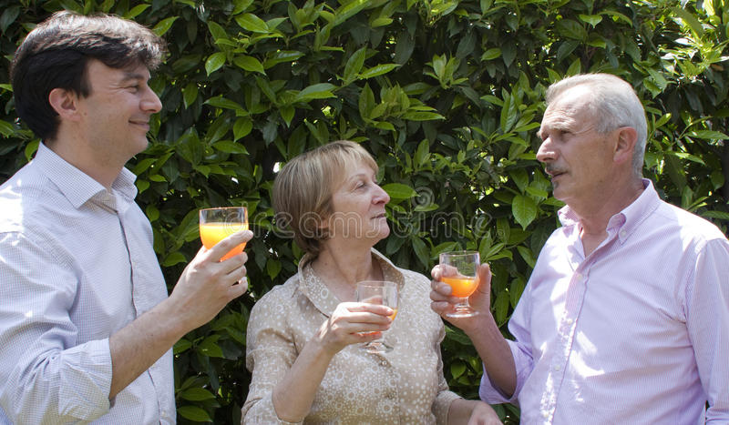 Familien-Party im Garten lizenzfreies stockbild