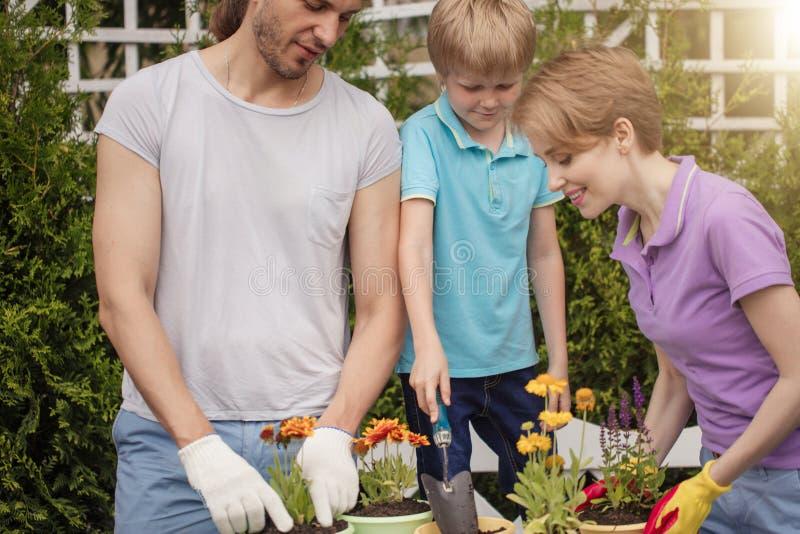 Familiengärtner mit dem Kind, das Blumen in den Töpfen mit Boden im Bauernhof pflanzt lizenzfreie stockbilder