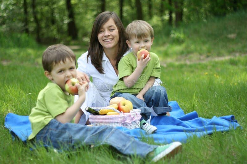 Familienpicknick stockbild