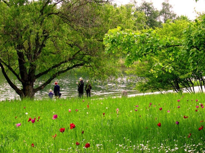 Familienweg im Park stockfoto