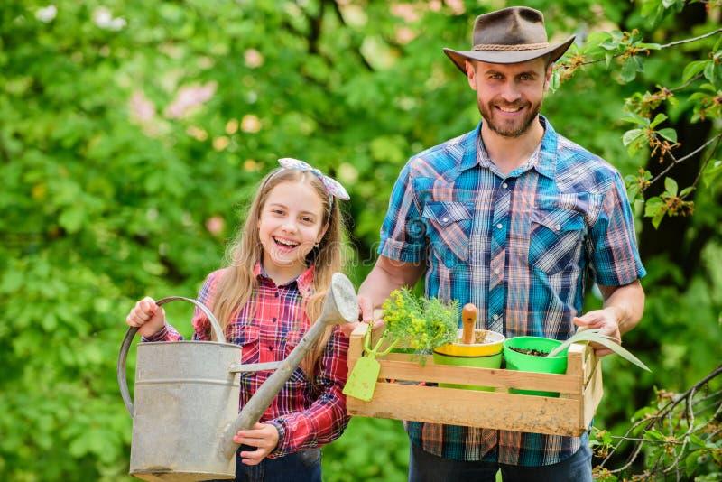 Familietuin Handhaaf tuin Het planten van bloemen Familiepapa en dochter die installaties planten Het overplanten van groenten va stock afbeeldingen