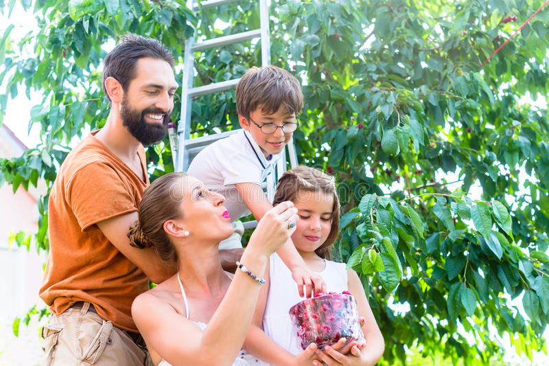 Familiezitting in tuin die koffie en cake hebben stock fotografie