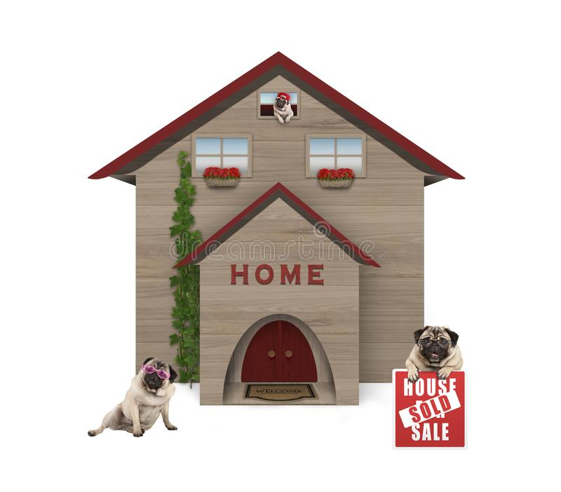 familiy平均中产阶级哈巴狗的狗,坐下在有房子的庭院里在新的家卖了标志 向量例证
