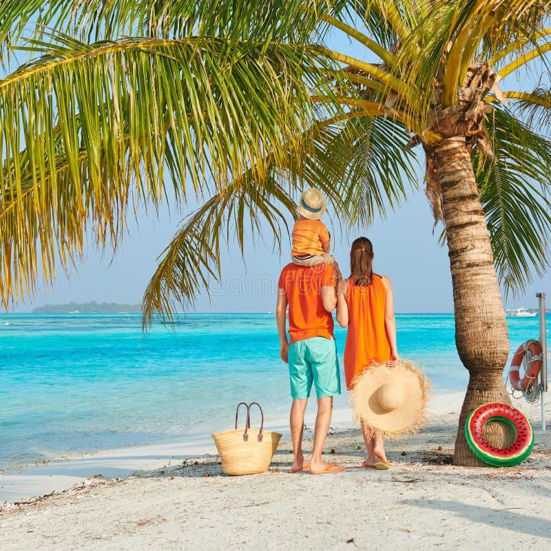 Familj av tre på stranden under palmträdet royaltyfri fotografi