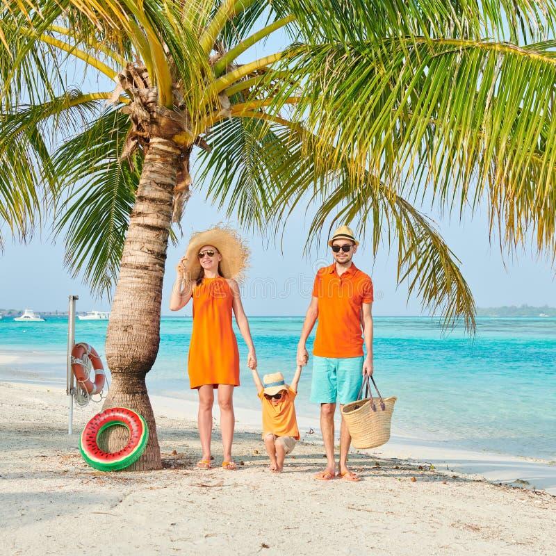 Familj av tre p? stranden under palmtr?det royaltyfria foton
