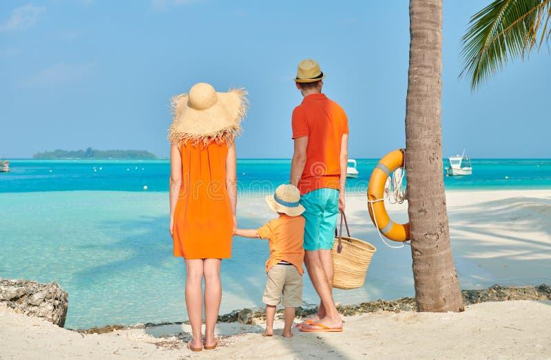 Familj av tre p? stranden under palmtr?det royaltyfria bilder