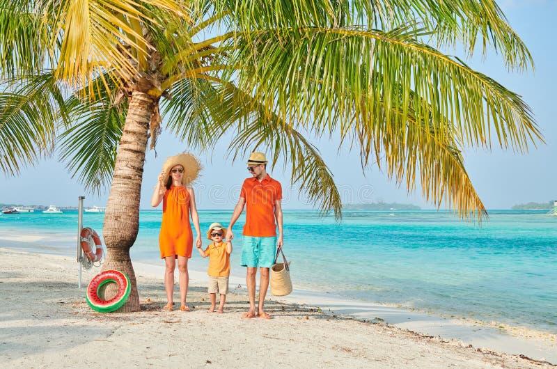 Familj av tre p? stranden under palmtr?det royaltyfri bild
